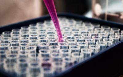 Adrasa investigates to achieve a more efficient textile bleaching process